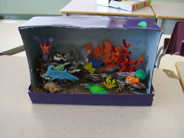 top ocean habitat diorama - photo #26